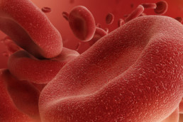 3d abstract red blood cells, erythrocytes illustration, microbio